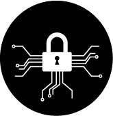 security icon download now