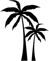 palm tree png icon, Symbol, Clipart. Download PNG,