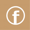 facebook icon aesthetic brown