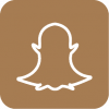 Snapchat icon aesthetic brown